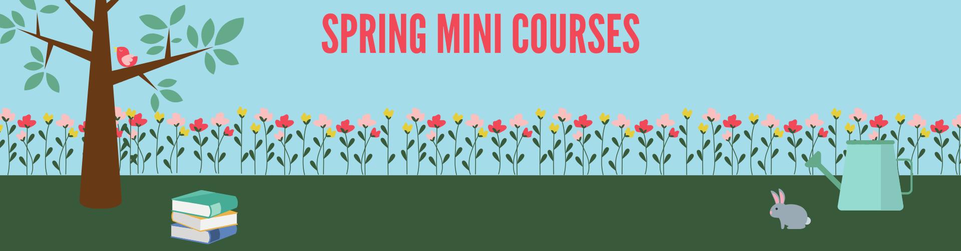 SSMU MiniCourses